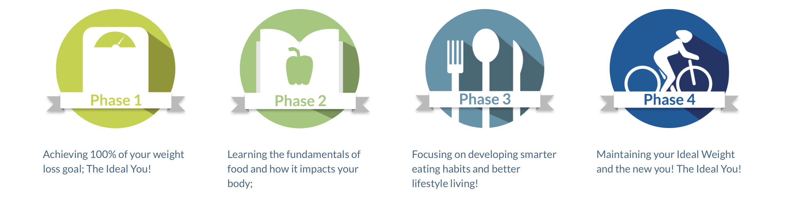 Four Phases of Ideal Protein
